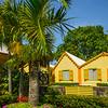 Tropical Gardens In St Kitts St Kitts, Caribbean Islands