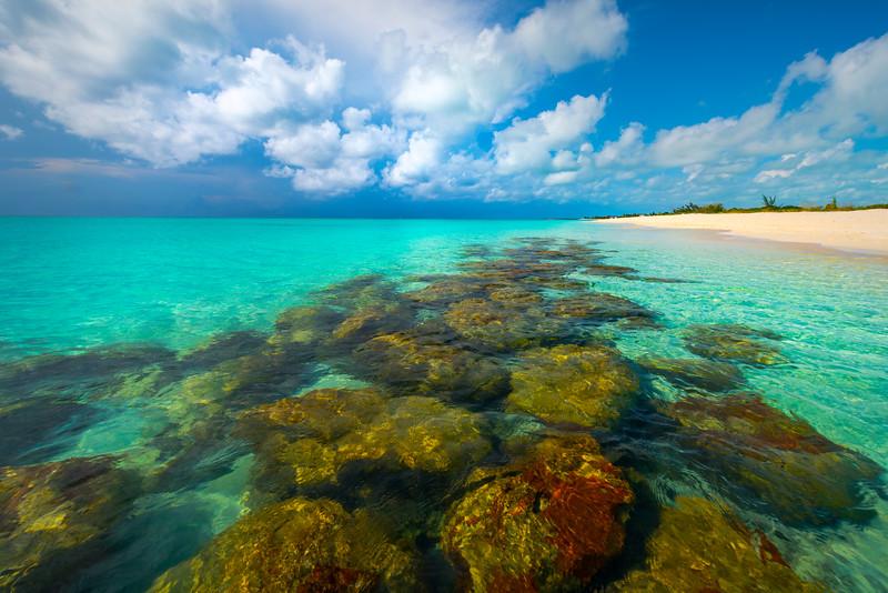 Coral Reefs Near Shore At Turks - Grace Bay, Providenciales, Turks & Caicos, Caribbean