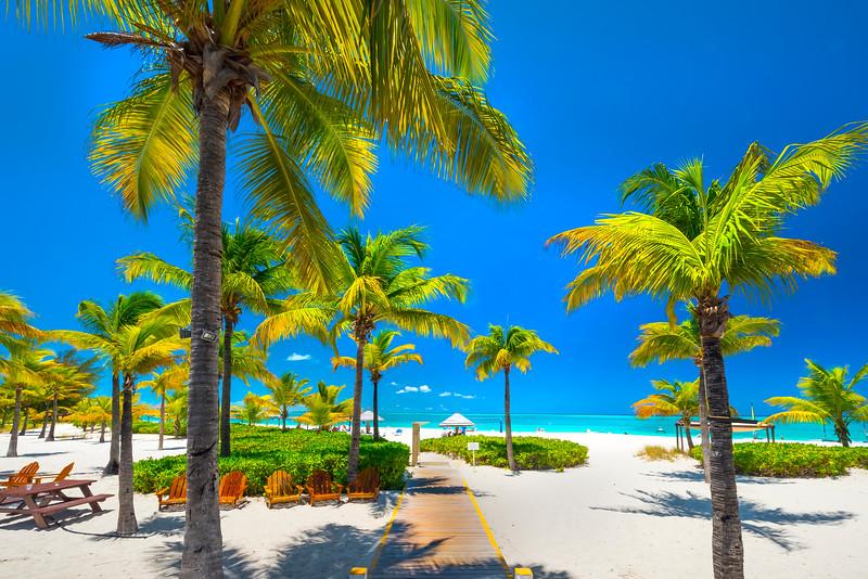 Life On A Tropical Beach - Grace Bay, Providenciales, Turks & Caicos, Caribbean