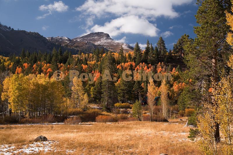 (IMG6034) New snow enhances this fall image