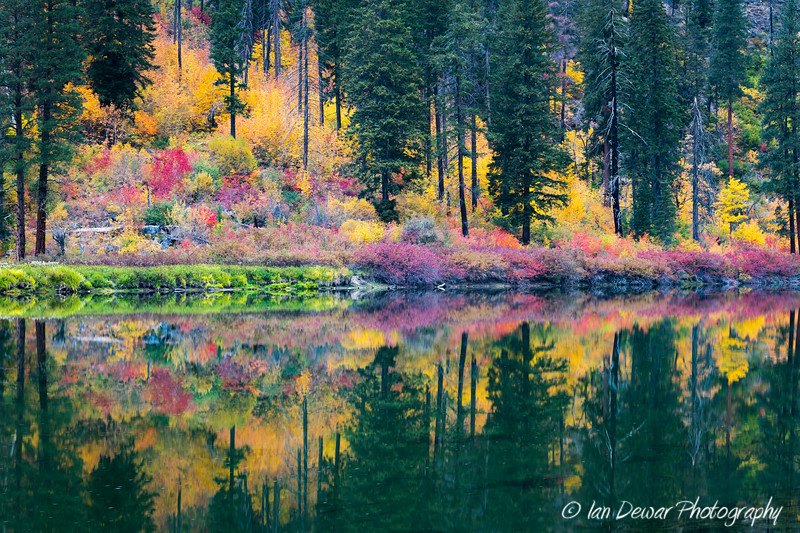 Fall reflection in the Wenatchee River