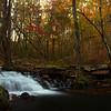 Collins Creek - Fall 2011
