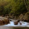 Bartlett Cascades, Vermont