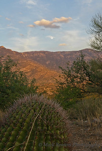 Twilight Moonrise over Catalina Mountains