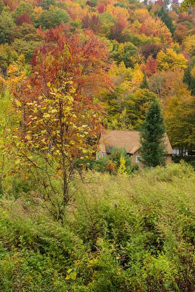 Hidden and tucked away ...  among the beautiful foliage -  Catskills NY