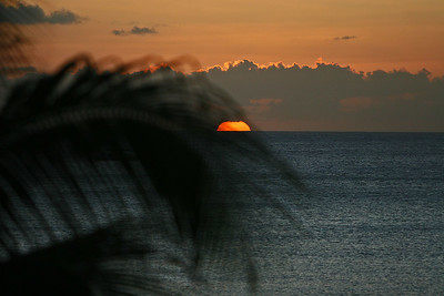 Looking through a palm leaf at a sunset in the Cayman Islands, January 2007.