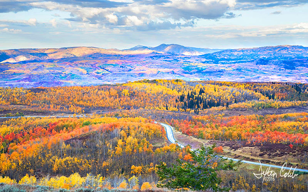 Utah's Hwy 39 & Cache Natl Forest
