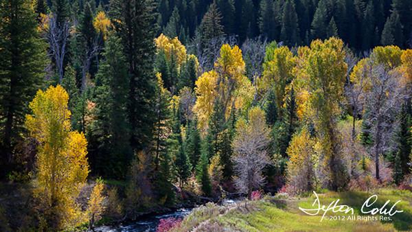 American Fork Canyon - Utah-L