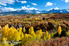 "Dallas Divide in Midday Light<br /> Time of Day:  3pm, 4 hours before sunset<br /> September 29, 2012<br /> <br /> Finally had a chance to photograph the fall colors in Colorado.  Casse and I spent the last week of September 2012 there with a few days in the Crested Butte area and a few days in the area not far from Ouray.<br /> <br /> Lovely colors in great abundance.  Although I will say the reds in Northern Utah have a bit more punch to them.<br /> <br /> On our last day there we met a photographer from the bay area, didn't get his name but I think it was Stephen Oachs, who advocated shooting midday.  There he was at the Dallas Divide location waiting for clouds to blow into the scene so he could photograph at noon.  This got me to thinking: Is it possible that landscape photographers, as a group, have gravitated to shooting in the golden hour to their detriment?  I mean there have to be scenes that lend themselves better to mid-day light than evening light.  Here is Mr. Oach's image taken there:  <a href=""http://www.stephenoachs.com/gallery-colorado.php"">http://www.stephenoachs.com/gallery-colorado.php</a> .<br /> <br /> So here we are. This scene was photographed in what some would call harsh midday light.  But actually, I'm quite pleased with it.  It works for me probably because it is so different from the usual images made at this location.  The colors seem to have much more impact in this light than in muted evening light and the sky is a wonderful shade of blue.<br /> <br /> A polarizer and 2 stop hard grad were used in this shot."