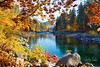 Waterfront Park, Leavenworth, WA<br /> Time of day:  about 2 hours after sunrise<br /> October 20, 2018<br /> <br /> With the show being over in several of the areas we planned to shoot, like Mt Rainier, we migrated to the areas where the fall color show occurs in late October.  This led us to Leavenworth, Washington.<br /> <br /> As we arrived in Leavenworth, Casse remarked that the place looked like Solvang, California with its quaint Bavarian feeling.  Well, it turns out that they did in fact model the town after Solvang.  Who woulda thunk?<br /> <br /> No hotels were available on this Octoberfest weekend, so we stayed 20 miles away in Wanatchee.  Apple orchards along the roadway leading to Leavenworth were plentiful and colorful, so it was a nice drive to Leavenworth.<br /> <br /> We planned to shoot primarily in the Wanatchee National Forest southwest of Leavenworth, but we found Waterfront Park in Leavenworth more interesting.  <br /> <br /> So we woke up early Sunday morning and went for a walk in Waterfront Park.  It was a bit chilly out at 35 degrees.<br /> <br /> All in all, I've got to rate this local park right up there with the best of 'em.  Wonderful walking paths lead you to all the sights too.  <br /> <br /> This view, along the Wanatchee River, was a treat to see in person.  There was a slight breeze rustling the leaves, and the light was just right.  If it had not been so chilly we might have dallied a bit more. <br /> <br /> Can you see the bridge in the distance?<br /> <br /> Lovely view.