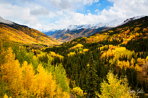 Uncompahgre National Forest<br /> Near Ouray, Colorado<br /> September 29, 2014 (late morning 3hrs after sunrise)<br /> <br /> Casse and I were heading north to Ouray from Durango when we stopped to see what all the fuss was about.  We met a young lady from San Diego named Carrie who was glad to see another California license plate.  Carrie had been in Colorado for a few weeks and had been returning to this site as the colors evolved.<br /> <br /> Seeing the potential of the site, we quickly set up our cameras and fired off a few shots but part of the scene was shrouded in cloud cover so we would have to return.  No problem, it was the best fall landscape scene we had seen thus far this season.  The Ridgeway area, 20 miles to the South was still practically all green.<br /> <br /> A storm was moving in so we were able to photograph it under a blanket of snow too the next day.<br /> <br /> Lovely view.<br /> <br /> No filters were used.