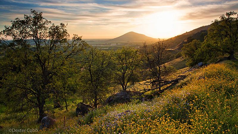 Mullins' Theme - Saddleback Sunset