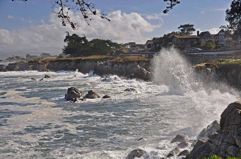 Pacific Grove 2