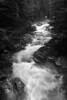 05-2013 Snoqualmie River B&W