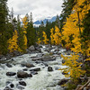Icicle Creek Fall 5 10-2016