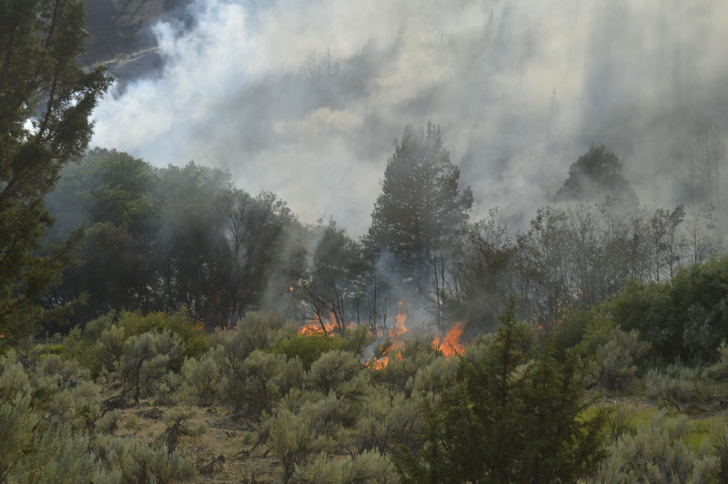 Fire burning in creek bed alongside OR-218 Just east of US-97 between Antelope & Madras Oregon
