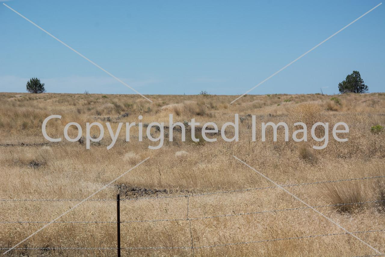 Strange Oregon Outback