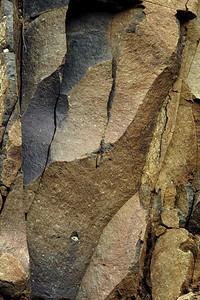 Rock Seimsuit