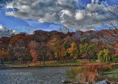 Central Park Fall 2010