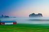 Pennsylvania, Morrison Cove, Spring morning Sunrise, Fog Landscape, 宾夕法尼亚 田园, 风景