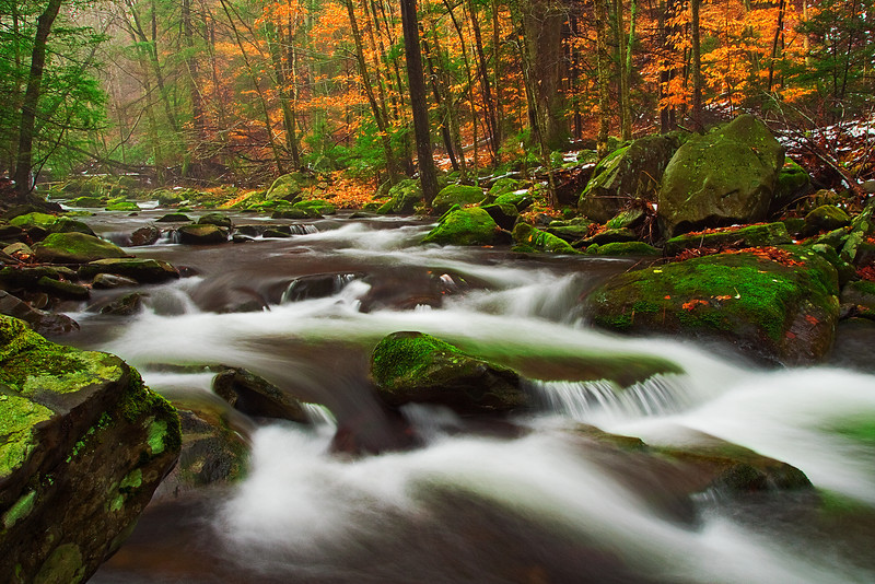 Pennsylvania, Poconos, Fall Colors, Foliage, Broadhead Creek Landscape, 宾夕法尼亚 田园, 风景