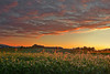 Pennsylvania, Penns Valley, Sunrise, Farmland Landscape, 宾夕法尼亚 田园, 风景