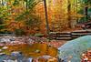 Pennsylvania, Laurel Highlands, Fall Colors, Foliage, State Park Landscape, 宾夕法尼亚 田园, 风景