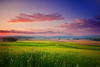 Pennsylvania, Morrison Cove, Spring morning Sunrise Landscape, 宾夕法尼亚 田园, 风景