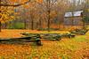 Pennsylvania, Poconos, Fall Colors, Foliage, State Park Landscape, 宾夕法尼亚 田园, 风景
