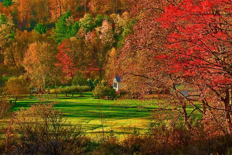 Pennsylvania, Martingsberg, Fall Colore, Foliage Landscape, 宾夕法尼亚 田园, 风景