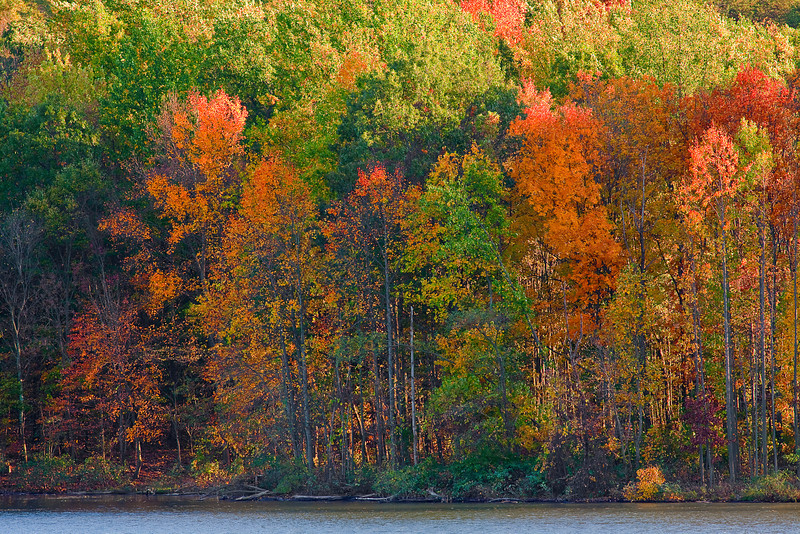 Pennsylvania, Raystown Lake,  Fall Colors, HDR, Landscape, 宾夕法尼亚 田园, 风景