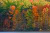 Pennsylvania, Raystown Lake,  Fall Colors, HDR, Landscape, 宾夕法尼亚 田园, 风景