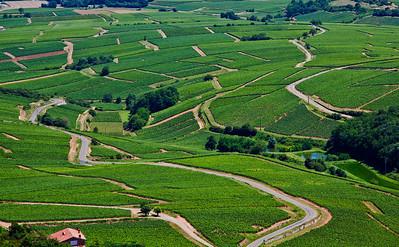 Roche de Solutré - Saône-et-Loire - France (vue de...) Vignes du Beaujolais
