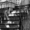 Staircase, B&W