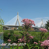 Bunker Hill-Zakim Bridge from North Point Park
