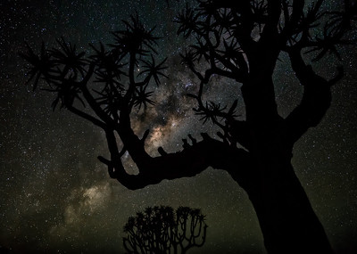 The stars shine brightly in Namibia...