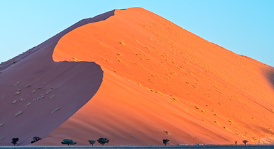 Contrast & Beauty of Namibia's Dunes