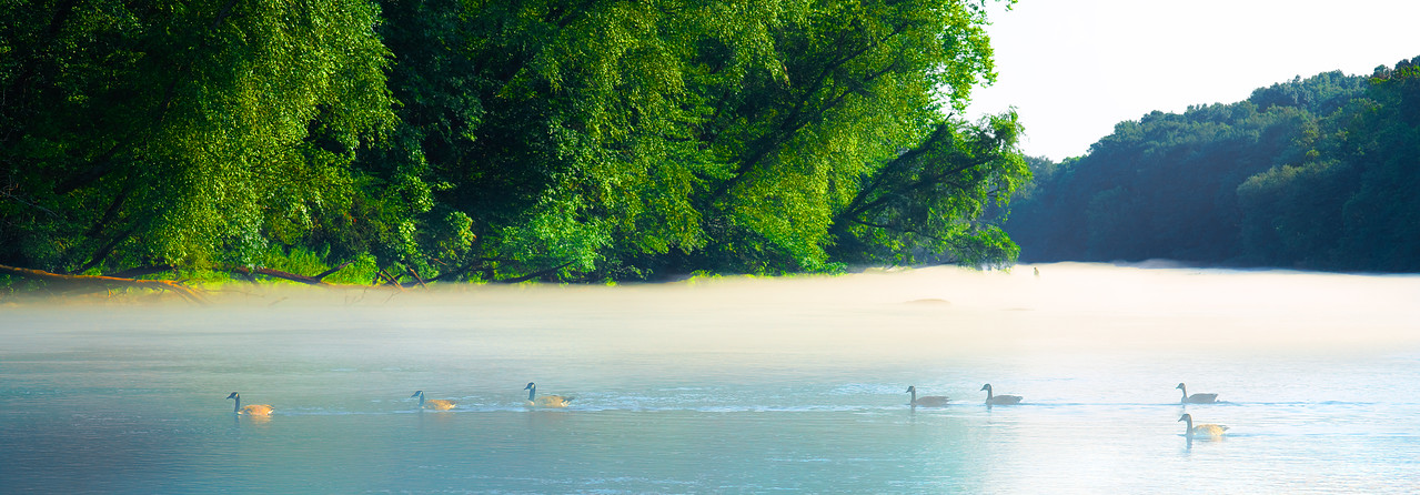 Chattahoochee Mist Late Afternoon Color
