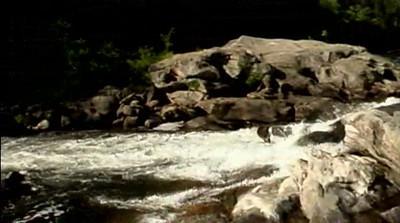 Chattooga River Rapids Video