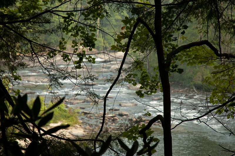 Chattooga River