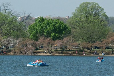 Paddle boats on a post-peak Sunday afternoon.