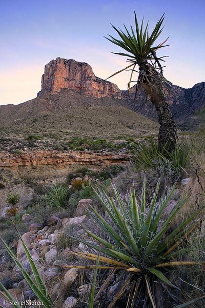 Texas Sunrise - Guadalupe Mountain National Park Texas