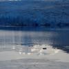 Glaciar Grey in the morning