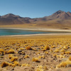 "Laguna Miscanti, Atacama Desert<br /> For the german report check out: <a href=""http://blog.tapir-store.de/planet-erde-reiseberichte/9042.patagonien-und-feuerland.html"">http://blog.tapir-store.de/planet-erde-reiseberichte/9042.patagonien-und-feuerland.html</a>"