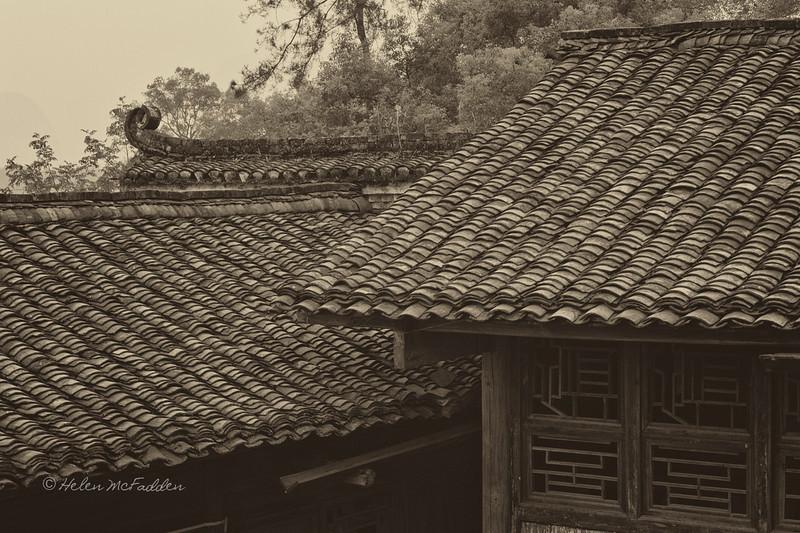 Lotus Temple Roof