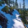 92  G Snowy Trail Up Sun V