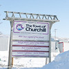 Churchill, Manitoba : This is a small town which has about a population of 1000. Michael Spence who is the co-owner of Wat'Chee expeditions is also the mayor of this town.