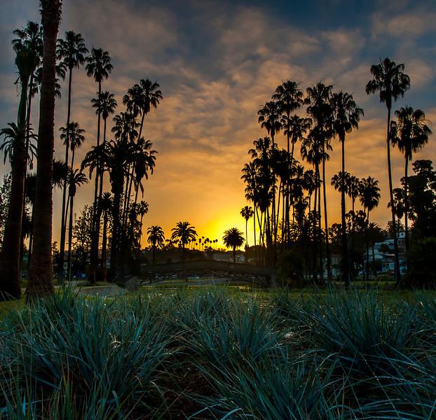 Colorful Echo sunrise