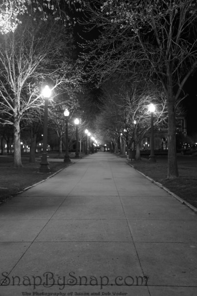 A night time image of an empty sideway in a city park.