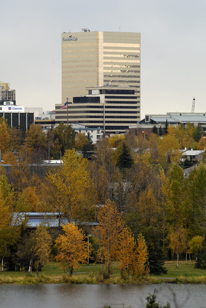 The Conoco Phillips Building marks the Anchorage skyline amid autumn colors. This photograph was taken from a mid-town overlook in late September.